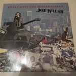 Buy vinyl record joe walsh there goes the neighborhood for sale